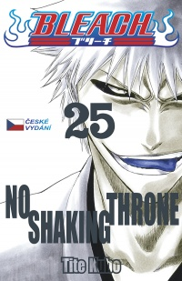 Bleach #25: No Shaking Throne