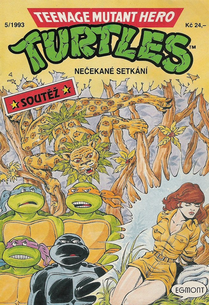Teenage Mutant Hero Turtles #17 (5/93)